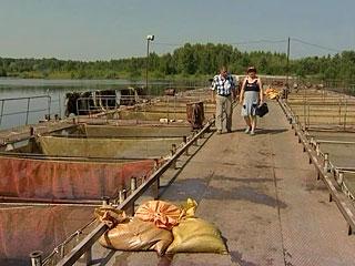 магазин рыбалка в волгореченске